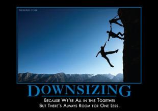 Downsizing_large