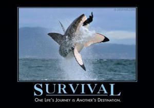Survival_large
